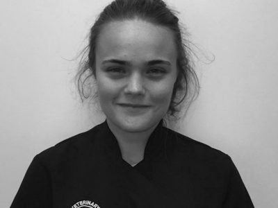 Dr Holly Wilson, Acorn Veterinary Centre